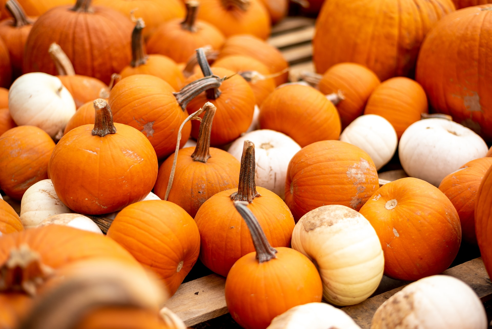 Clever No-Carve Ways to Decorate a Pumpkin